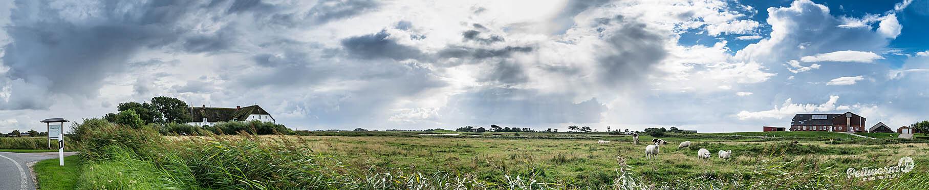 Pellworm im Panoramaformat mit dem Clausenhof unter einem dramatischen Himmel