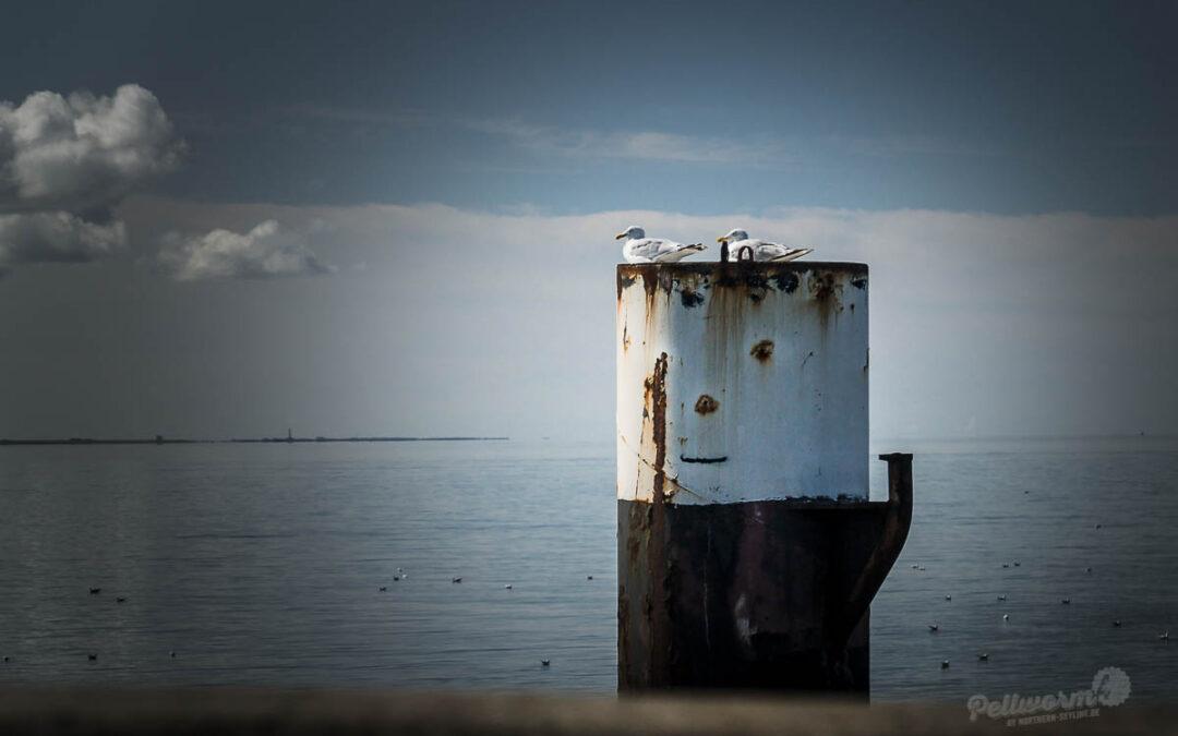 Tränen des Abschieds am Pellwormer Tiefwasseranleger