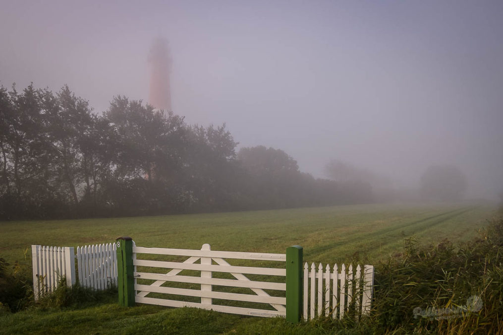 So schön ist  Pellworm im Nebel
