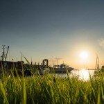 Hafen Pellworm bei Sonnenaufgang