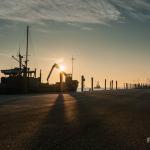 Licht und Schatten im Hafen Pellworm