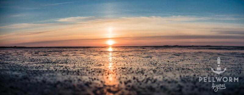 Sonnenuntergang über dem Pellwormer Watt