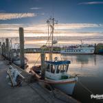Viele Kutter und die MS Nordfriesland im Hafen von Pellworm bei Sonnenuntergang