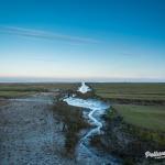 Pellworm - Salzwiesenpanorama zur blauen Stunde