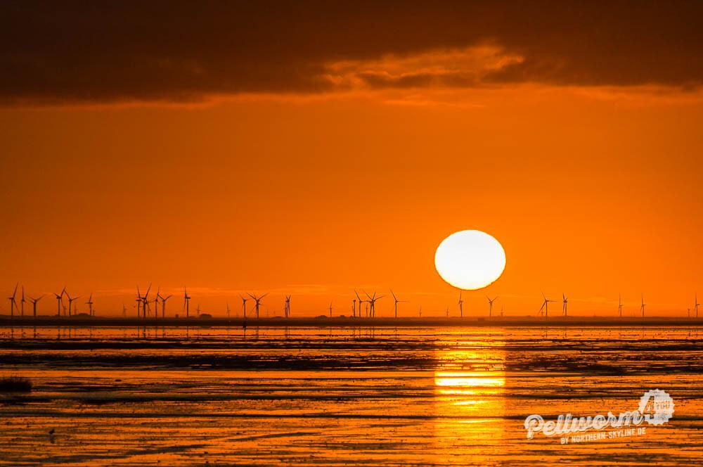 Sonnenaufgang über der nordfriesischen Küste