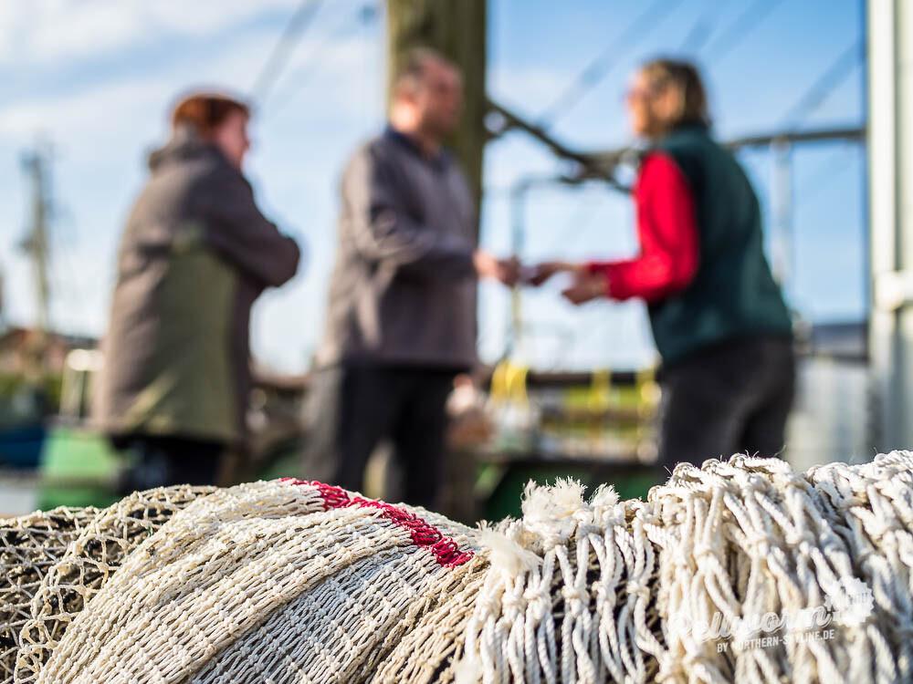 Krabben kaufen im Pellwormer Hafen