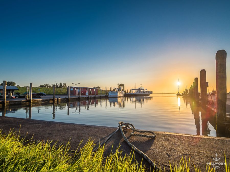 Der Pellwormer Hafen im goldgelben Licht des Sonnenaufgangs