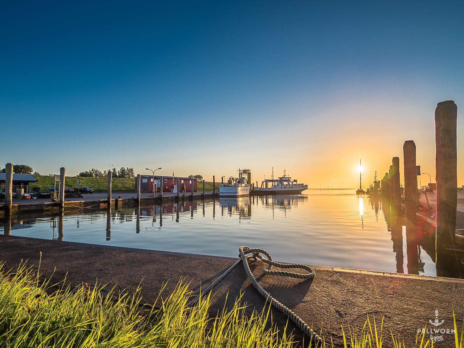 Der Hafen der Nordseeinsel Pellworm im goldenen Licht des Sonnenaufgangs. Das ist echte Entspannung im Urlaub.