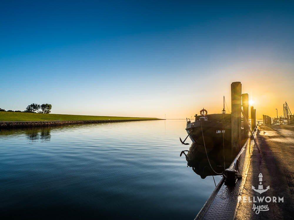 Sonnenaufgang im Hafen von Pellworm