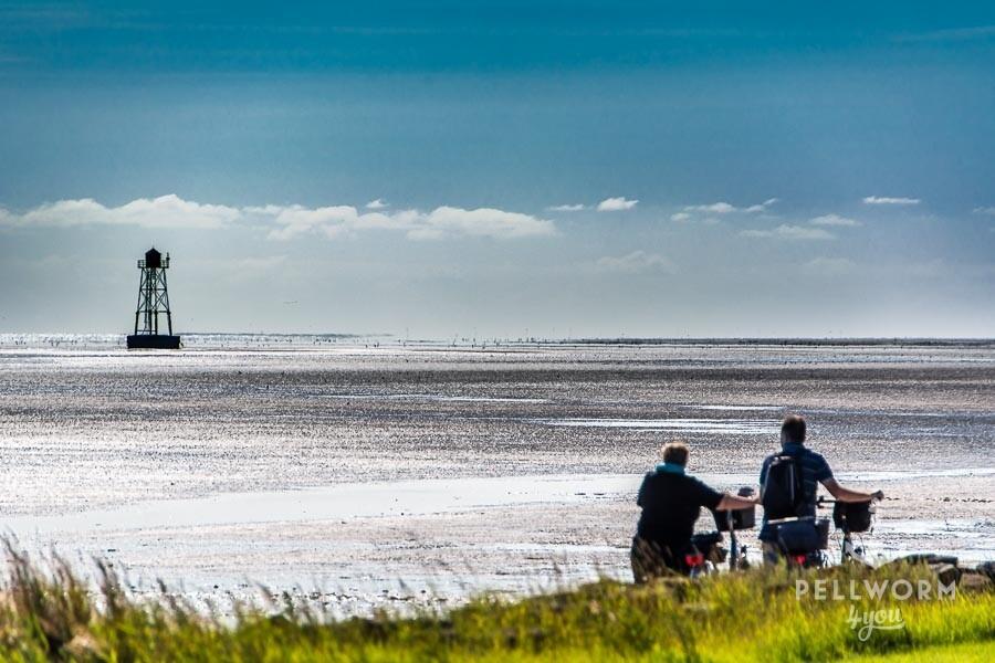 Pellwormer Uferpromenade mit tollem Blick aufs Wattenmeer