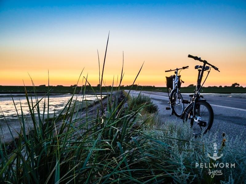 Fotostop im Sonnenuntergang auf der Zufahrt zum Pellwormer Tiefwasseranleger