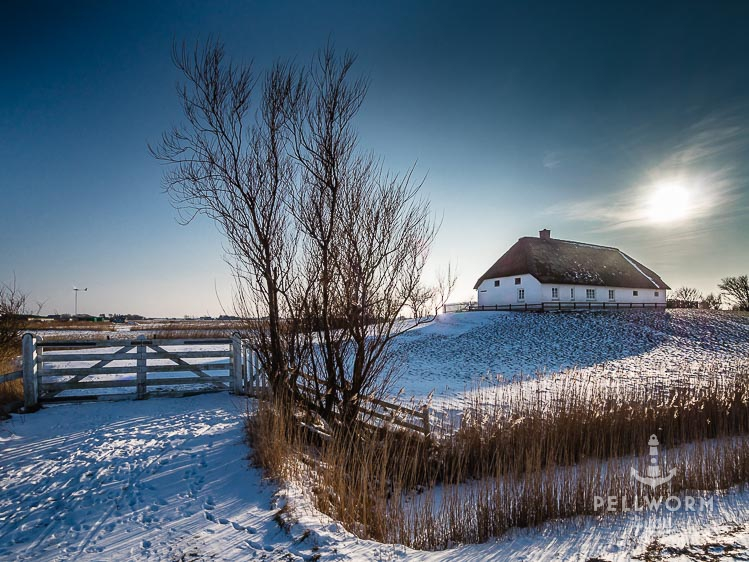 Ein Wintertraum auf Pellworm mit Kälte, Schnee und viel Ruhe