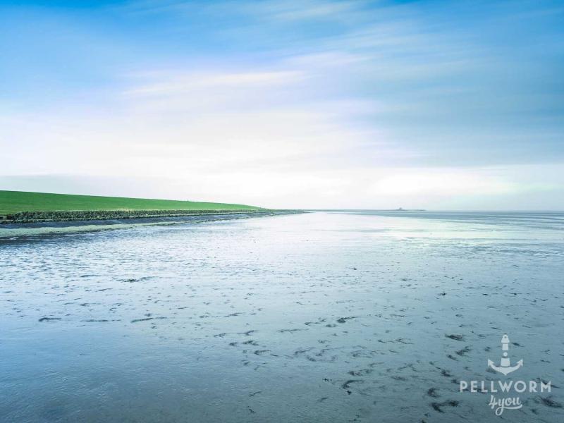 Der Wattboden glänzt im blauen Licht während der Blick über die Weite in Richtung des Tiefwasseranlegers fällt.