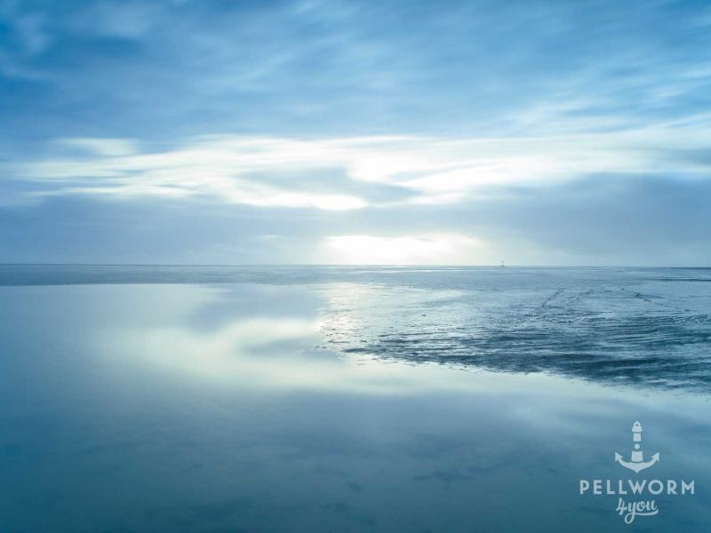 Das Wattenmeer vor Pellworm ist in blaues Licht getaucht