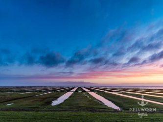 Die Salzwiesen zwischen Hafen und Tiefwasseranleger bei Sonnenaufgang