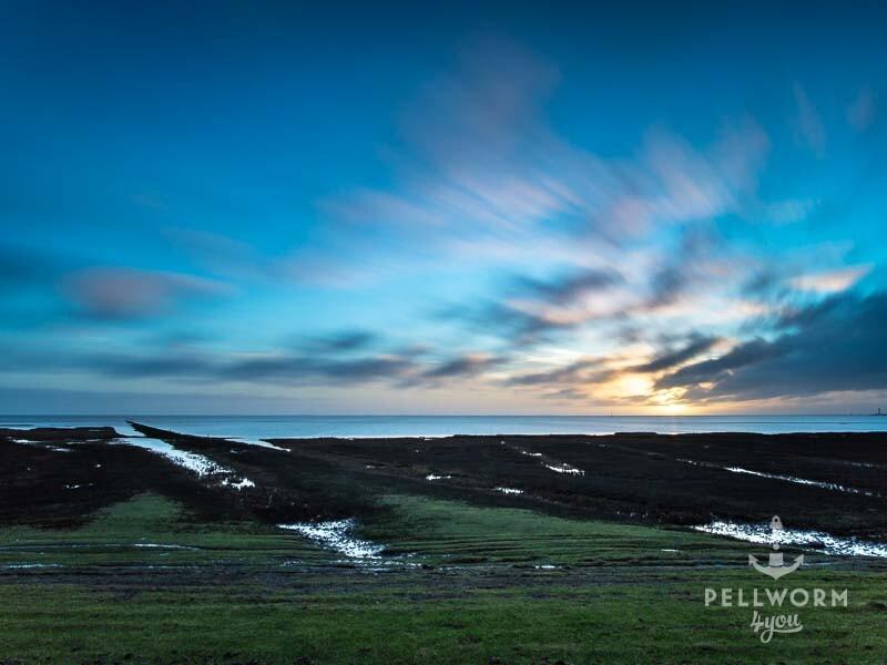 Die Sonne geht hinter den Salzwiesen auf Pellworm auf